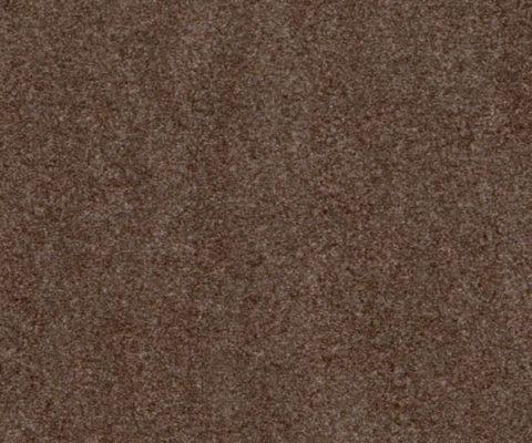 Сахара-S62008