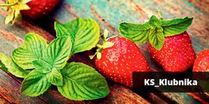 2_KS_KS_Klubnika